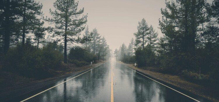 Will Rain affect my pest control treatment?