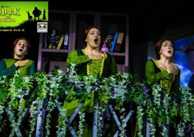 Shrek 3 fionas2