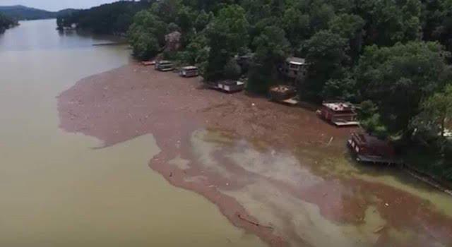 Lake Lure Storm Debris