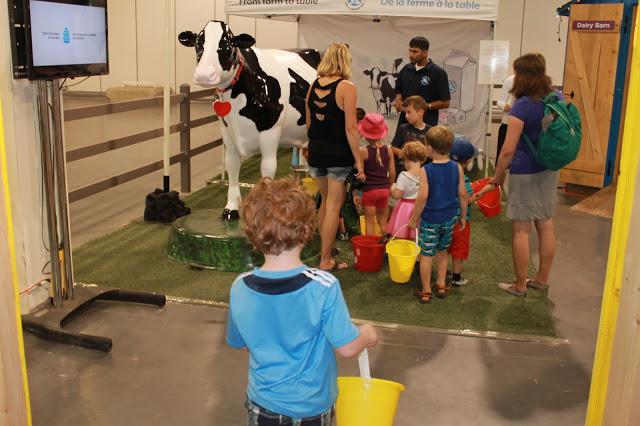 Farm show