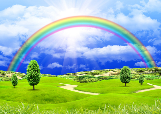 Rainbow in the blue sky over a glade