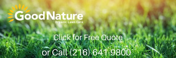 Good Nature Lawn Care