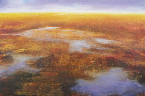 Sunlit Marsh II