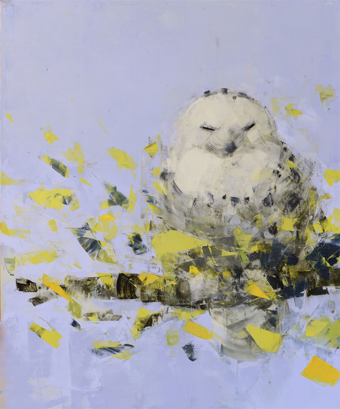 Snowy Owl Dreaming in Blue and Green
