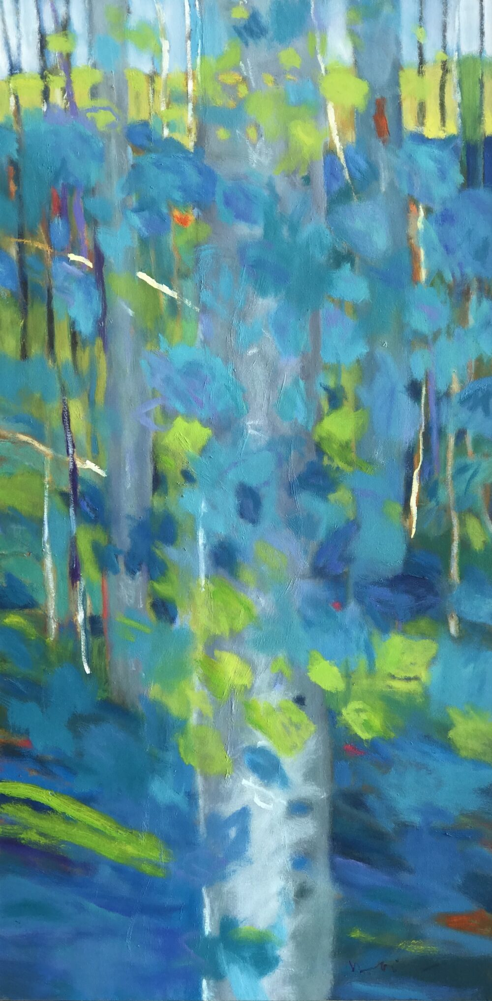 Marshall Noice - Mossy Gorge