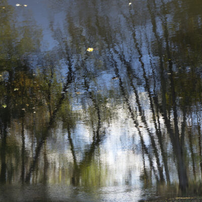 Kirsten Hoving - Waters Edge 10