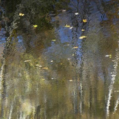 Kirsten Hoving - Waters Edge 13