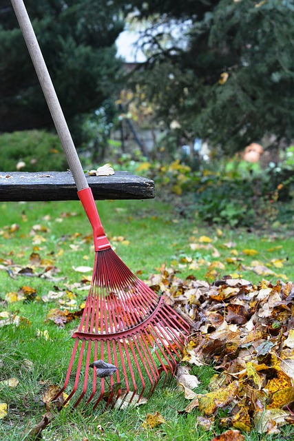 Getting your Home Ready for Fall