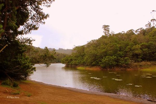 berijam lake and forest