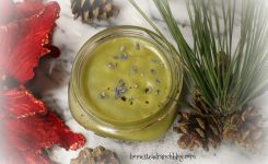 Get Savvy  DIY Organic Herbal Salves Upper Repitory and More