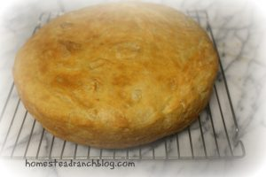 Homemade  Dutch Oven Bread