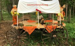 Harvest Hoedown at True North Ranch