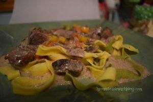 Beef Stroganoff Ranch Favorite