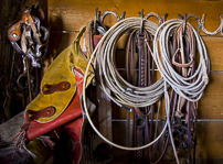 Tack room; ropes and chaps and bridles; In the region of the Upp