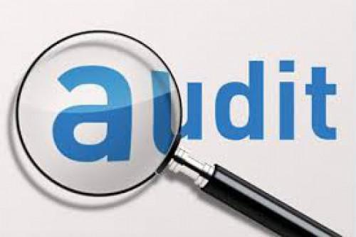 What do you mean by Stock Auditing ?
