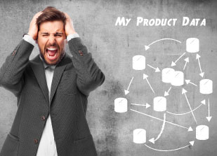 The Product Catalog Problem