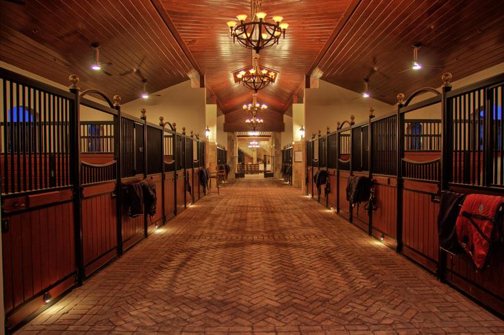 6 Ways to Earn Extra Income on Your Equestrian Property