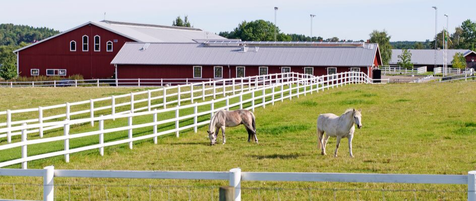 Making The Most Of Your Equestrian Property Investment