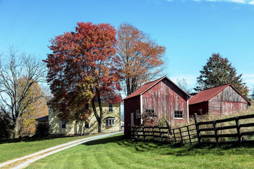 Farm House Wainfleet