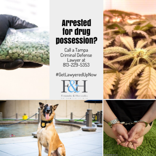 Arresteed for drug posession. Call Tampa criminal defense lawyer at 813-229-5353