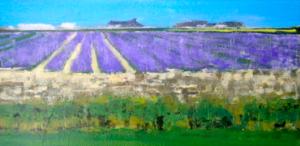 Lavender Holland Train Fields