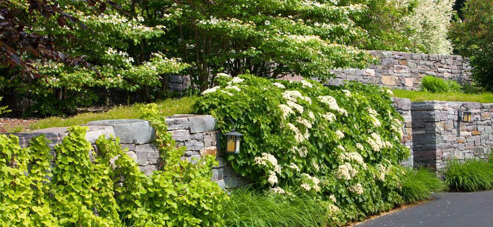 Rebekah Lamphere Hartland Designs Inc Landscape Design   Berkshires MA, Columbia County NY, Litchfield County CT, Bennington County VT