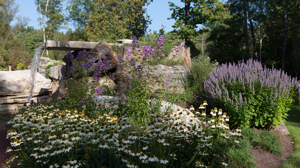 Waterfall-with-echinacea-and-agastache