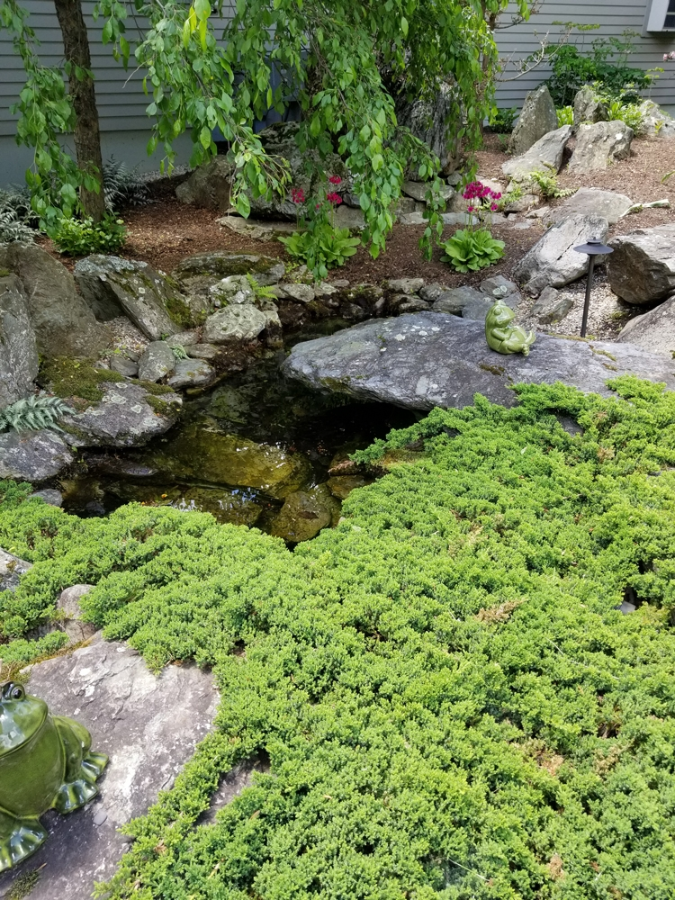 WaterFeaturew_CantileveredStone