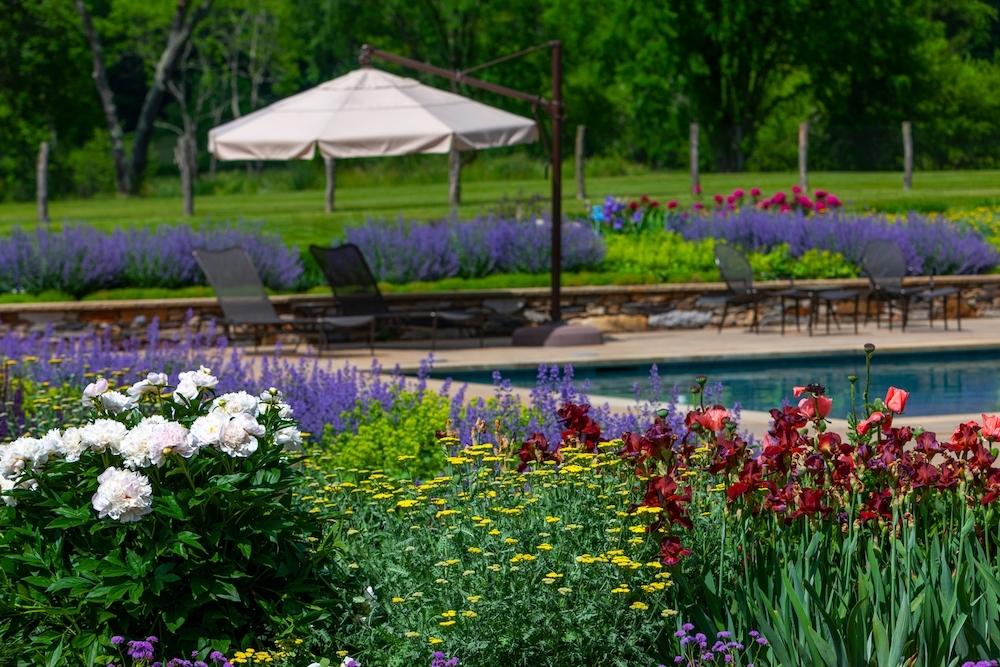 Rebekah Lamphere – Berkshire Garden