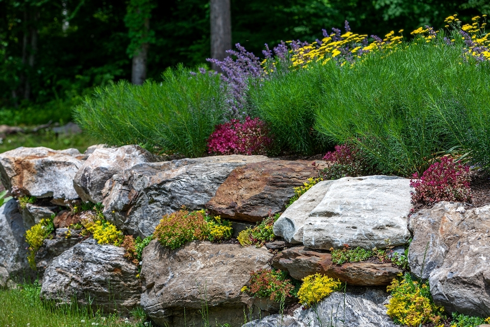 Rebekah Lamphere – Boulder Garden