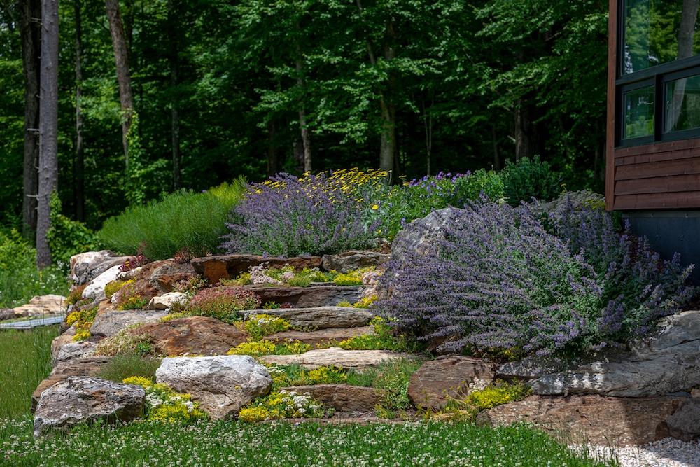 Rebekah Lamphere – Garden steps