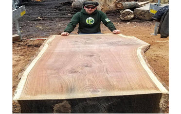 Eco Friendly Lumber – Eco friendly lumber your live edge