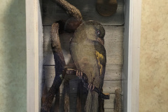Wall Sculptures - The Night Lonebird - 12x22x4 - Private Collection