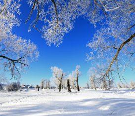 Winter HVAC Preventive Maintenance Tips