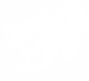 Global network white png image