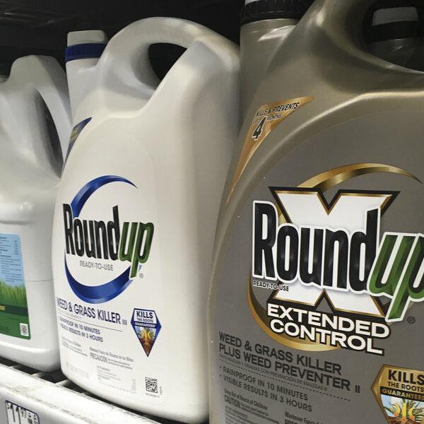 California Jury Slams Monsanto With $2B Verdict -