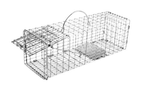 chipmunk trap