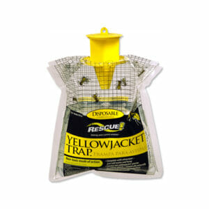rescue yellow jacket trap canada