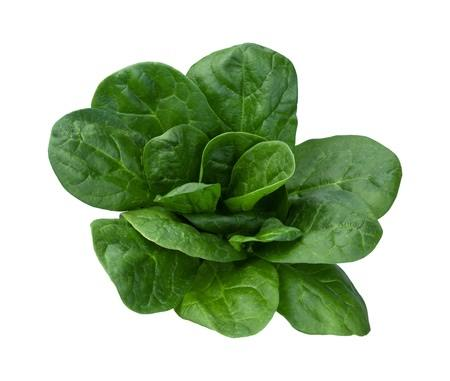 Leafy greens have gained a great reputation as a super food.