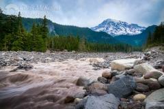Nisqually River and Mt. Rainier