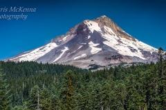 Mt. Hood 5978