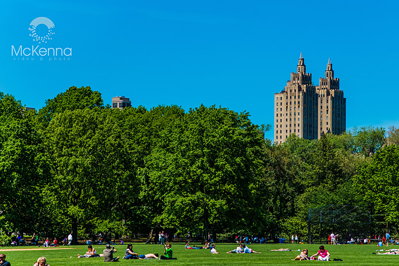 NYC_-_Central_Park_copy
