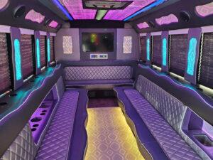 20-24 passenger party bus