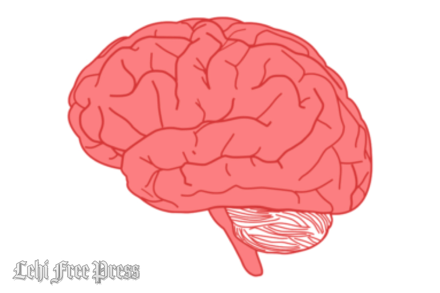 How Psychotherapy Works to Change Your Brain