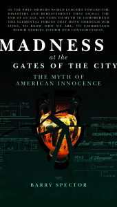 madness at the gates of the city book cover by barry spector