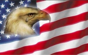 Photo of a United States of America Flag with an eagles head embossed on a portion of the stars.
