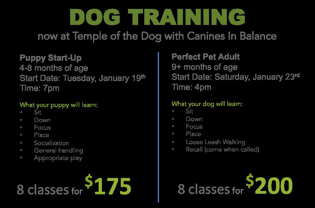 Puppy training Burlington