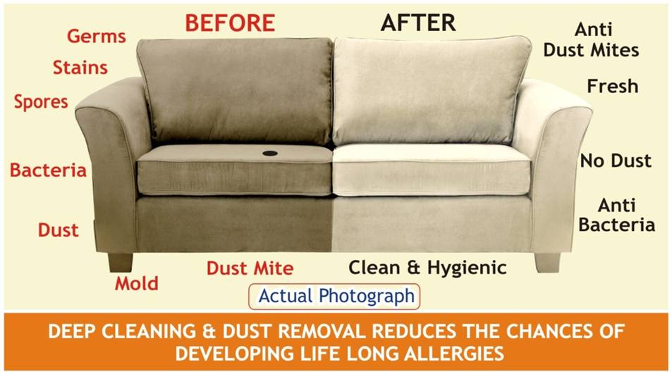 Best Carpet, Tile, and Upholstery Cleaners – Family Owned ...