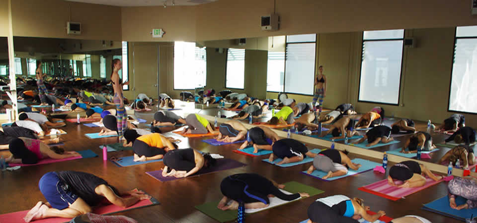 Some Like it Hot Yoga & Boutique