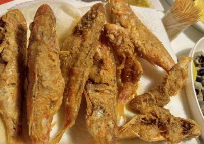 Cyprus fish